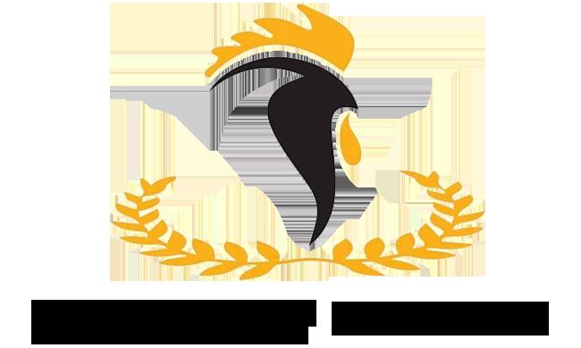 PT Raja Dinar Nusantara